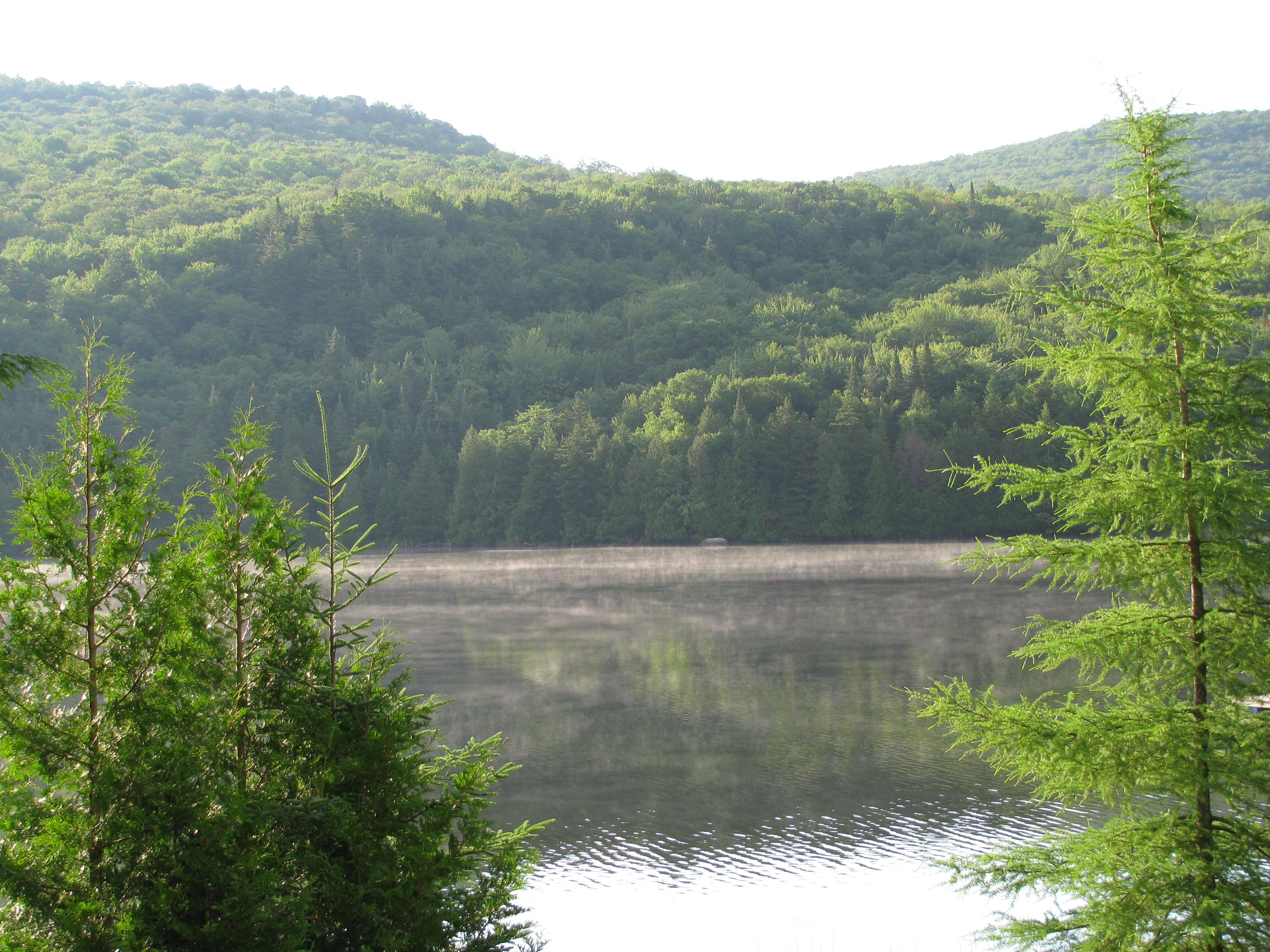 vermont property cottage colchester rentals lease estate drive commercial for brentwood vt real